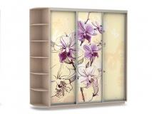 шкаф купе Трио Орхидея